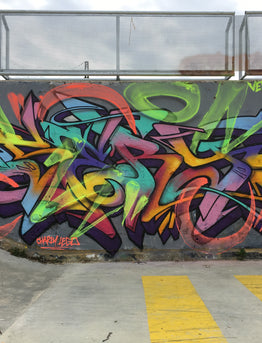 Spray Planet's 11 Questions with French Graffiti Artist SERY