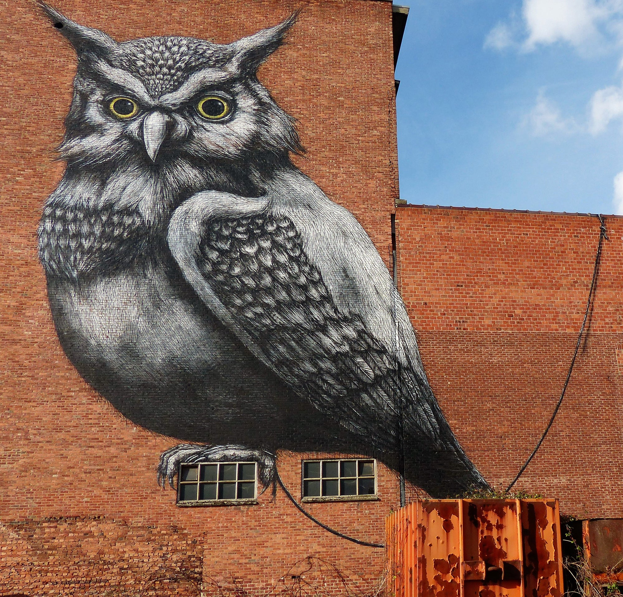 Artist Series: The Artwork of ROA, From Streets to Gallery