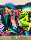 Spray Planet's 11 Questions With Graffiti Writer Shux One