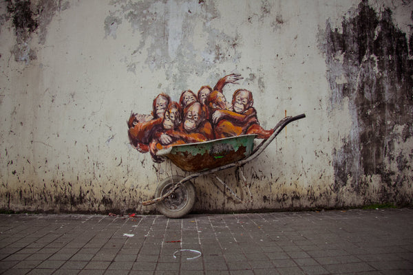 Edward Zacharevic Mural inspirations around the world