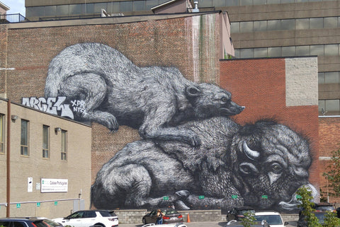 Artist ROA Mural and Artwork