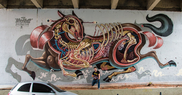 NYCHOS - Horse Dissected Mural