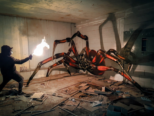 ODEITH - huge-spider-anamorphic-2018-odeith