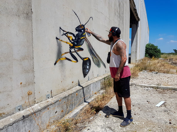 ODEITH - mud-wasp-odeith