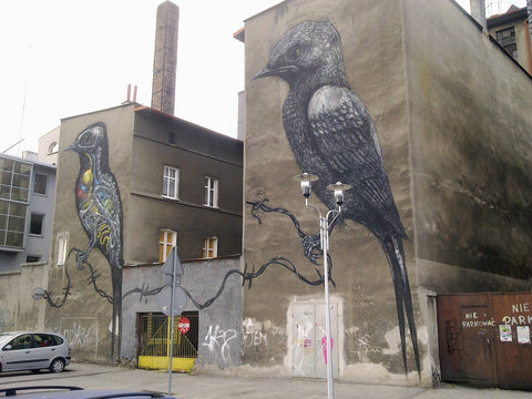 Birds in Poland by Artist ROA