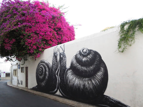 Fire Snails in Lagos by Artist ROA