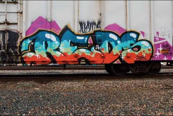Hitting Trains with Graffiti Artist REDS from Miami Florida