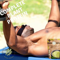 moringa powder is a complete plant protein