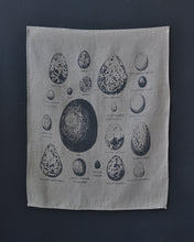 Load image into Gallery viewer, Tea towel - Bird Eggs