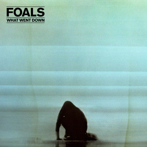 Foals, What Went Down LP