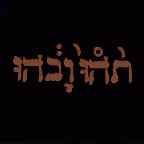 Godspeed You! Black Emperor, Slow Riot For New Zero Kanada EP