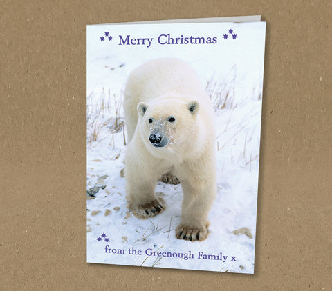 Christmas Cards for Business or Home, Polar Bear Photo Personalised with Logo or Message