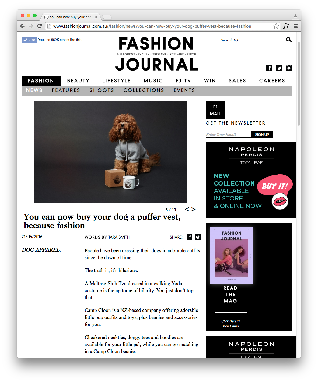 http://www.fashionjournal.com.au//fashion/news/you-can-now-buy-your-dog-puffer-vest-because-fashion