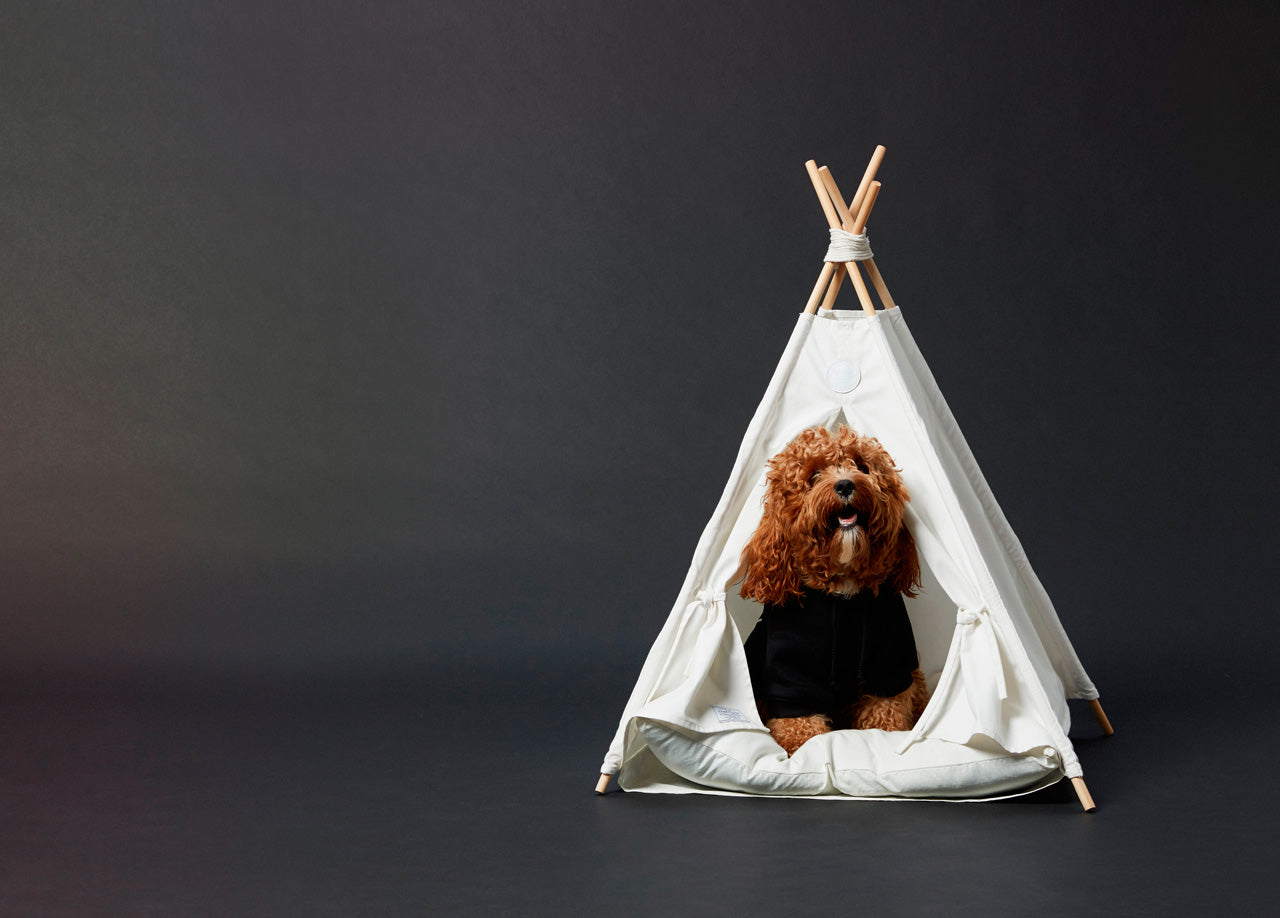 camp-cloon-pup-tent-tipi-bed-tipi-teepee-dogbed