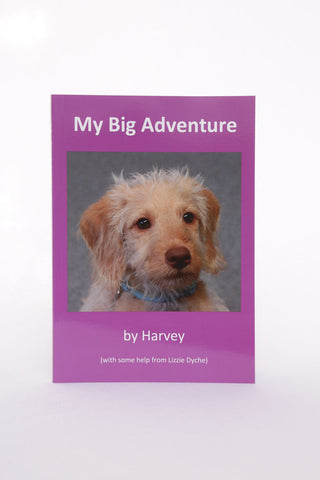 My Big Adventure Storybook