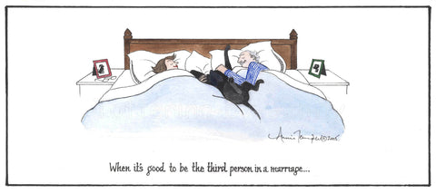 The third person in a marriage...