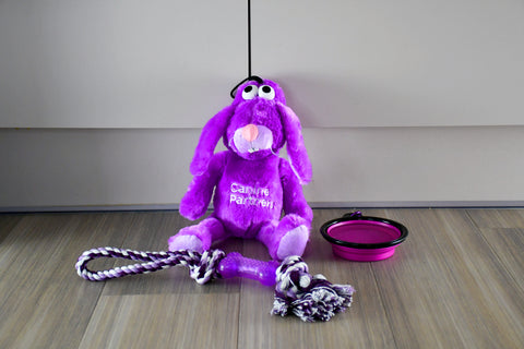 Pampered pooch dog toy value bundle