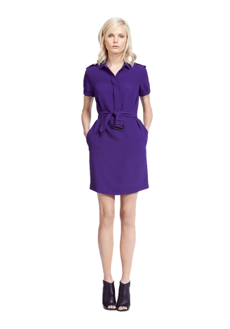 Belted Mulberry Silk Dress