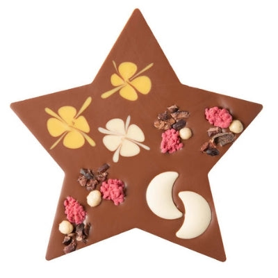 Christmas Chocolate Gift - Zotter Star with Raspberry | Hello Chocolate