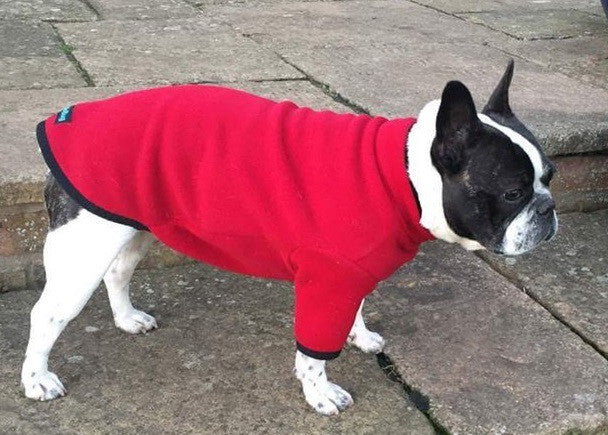 Snugglebug Pull Over Dog Jumper