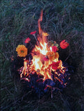 Elspeth Diederix # FIRE STILL LIFE # signed/ numb. 2004, mint