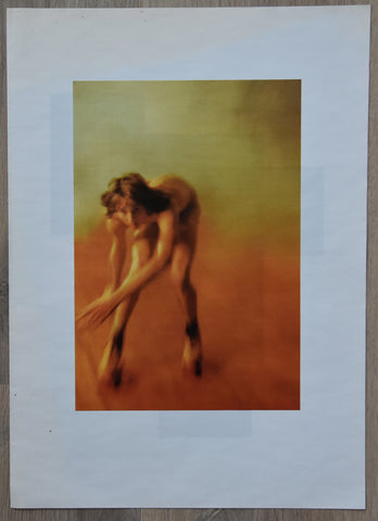 Agnes B, Point d'Ironie # RYAN McGINLEY # 2009, mint-