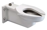 Zurn Z5683 Stainless Steel Antimicrobial Powder Coated Wall Hung Concealed Flush Valve Toilet