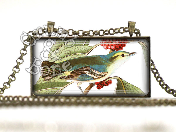 Audubon Bird Jewelry