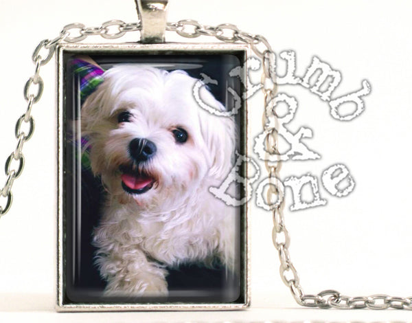 Dog Memorial Necklace in Silver - Crumb & Bone