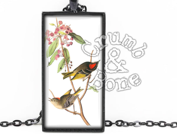 Audubon Bird Necklace in Black - Crumb & Bone