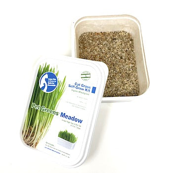 Pet Greens Meadow in tub (organic wheat grass), healthy snacks:Smallpetselect