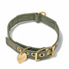 Canvas and Brass collar - olive, but not drab!, dog collars and leashes:Smallpetselect