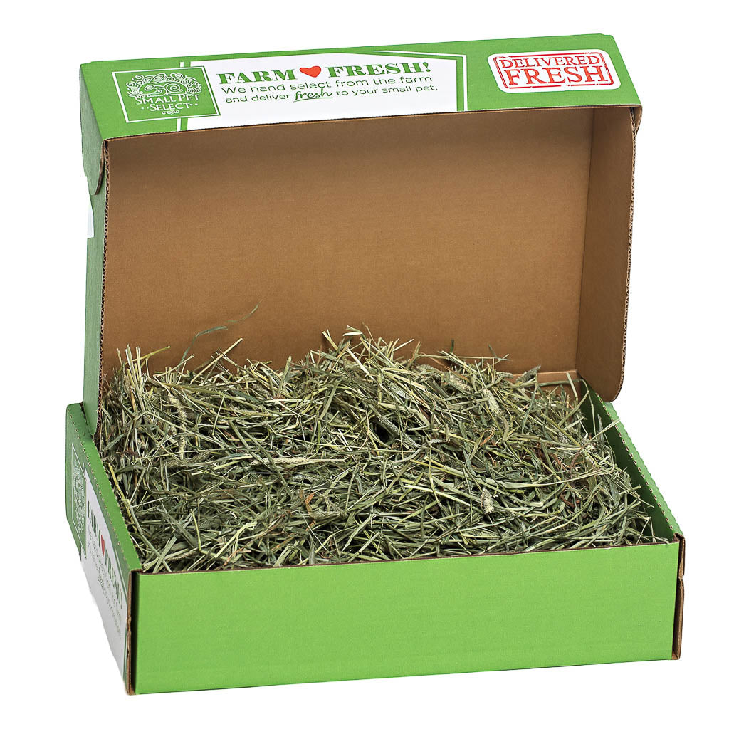 2nd cutting perfect blend timothy hay smallpetselect
