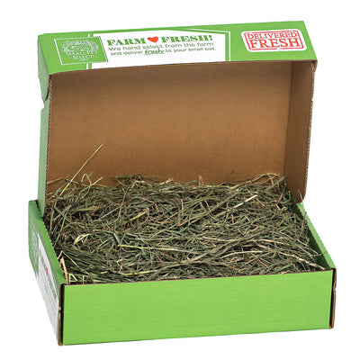 3rd Cutting Timothy Hay,:Smallpetselect