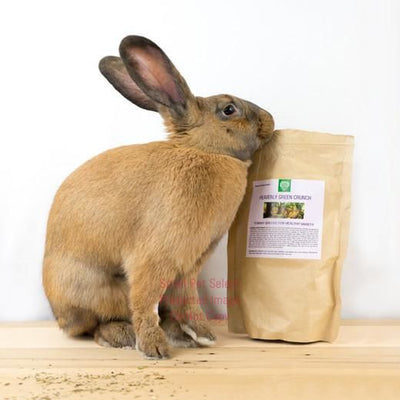 Heavenly Green Crunch, Healthy snacks:Smallpetselect