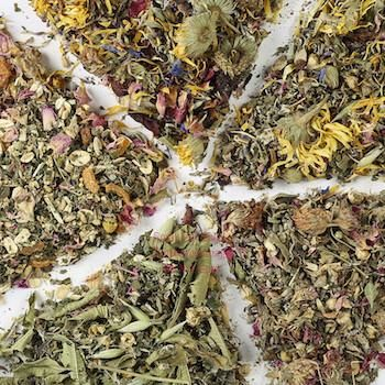 Herbal Sampler - all five herbal blends to try!, :Smallpetselect