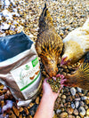 Garden Goodness Layer Feed with Botanicals (corn-free, soy-free, non-GMO), Chicken feed:Smallpetselect