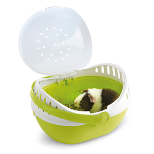 Tiny Pet Carrier, Small Animal Supplies:Smallpetselect