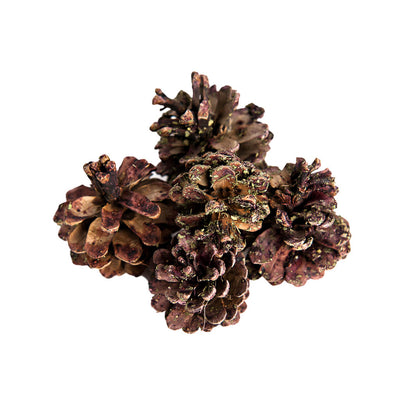 Fancy Fruited Pine Cone Chews, :Smallpetselect