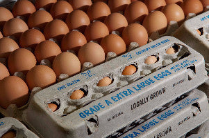 Eggs - Fingerlakes Farms