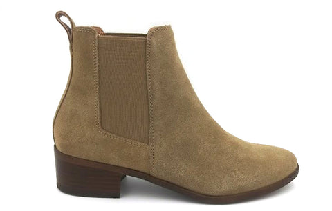 STEVE MADDEN Dover Women | Natural Suede (DOVE01S1245-B)