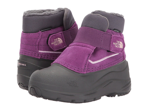 THE NORTH FACE Alpenglow Toddler | Dark Gull Grey / Wood Violet (CC4HTCE)