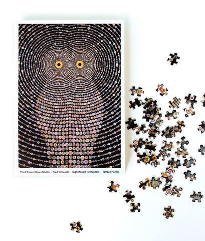Night Music for Raptors Puzzle By Fred Tomaselli