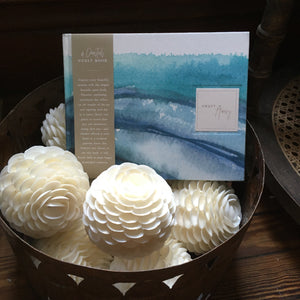 A Coastal Guest Book- Swept Away