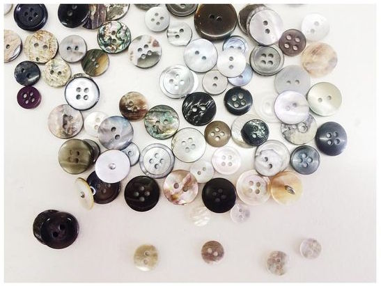 Abalone shell buttons