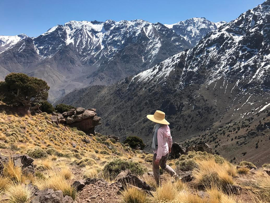 A stroll in the Atlas mountains