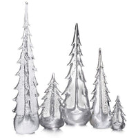 Silver Leaf Evergreen Trees