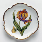 Anna Weatherley Tulips Bread and Butter, Purple/Orange