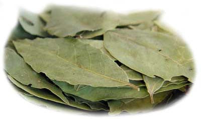 Bay Leaves, approx. 0.10 lb - Parthenon Foods
