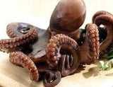 Whole Octopus 3-4 lb - Parthenon Foods